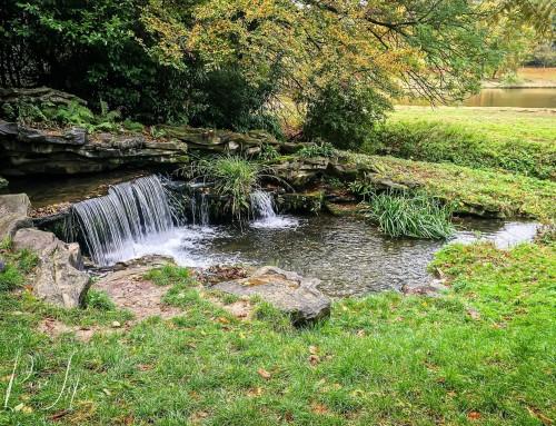 Vijvers van Woluwe (Park van Woluwe)